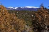 000 Big Buck Trail - Photo 24