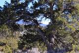 000 Big Buck Trail - Photo 27