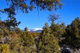 000 Big Buck Trail - Photo 4