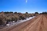 000 Big Buck Trail - Photo 8