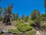 0 Black Bear Trail - Photo 10