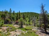 0 Black Bear Trail - Photo 13