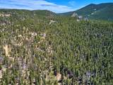 0 Black Bear Trail - Photo 18