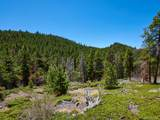 0 Black Bear Trail - Photo 2