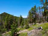 0 Black Bear Trail - Photo 5