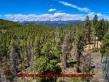 0 Black Bear Trail - Photo 6