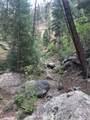 16139 Cochise Trail - Photo 11