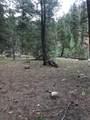 16139 Cochise Trail - Photo 14