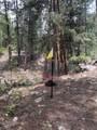 16139 Cochise Trail - Photo 17