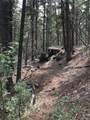 16139 Cochise Trail - Photo 18