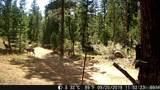 16139 Cochise Trail - Photo 29