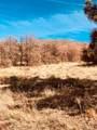 80 Elk Run - Photo 3