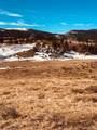 80 Elk Run - Photo 6