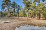 36424 Forest Trail - Photo 28