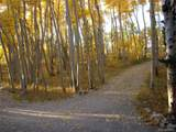 2884 High Creek Road - Photo 5
