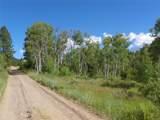 161.50 Acres - Photo 1