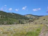 161.50 Acres - Photo 2