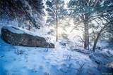 19110 White Pine Lane - Photo 14