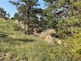 14704 Wetterhorn Peak Trail - Photo 26