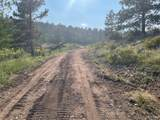 14704 Wetterhorn Peak Trail - Photo 29