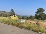 14704 Wetterhorn Peak Trail - Photo 31