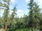 4518 Comanche Drive - Photo 13