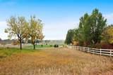 13910 Ptarmigan Drive - Photo 40