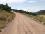 28900 County Road 179 - Photo 1