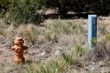 3207C Camino Del Rey - Photo 16
