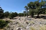 3207C Camino Del Rey - Photo 5