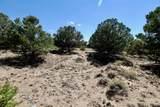 3207C Camino Del Rey - Photo 6
