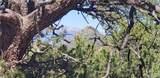 000 11th Trail - Photo 1