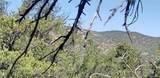 000 11th Trail - Photo 3