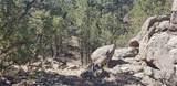 000 11th Trail - Photo 8