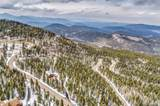 31247 Conifer Mountain Drive - Photo 39
