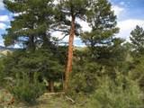 42.6 Acres - Photo 3