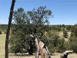 534 Breech Trail - Photo 13