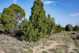 Lot 14 Apache Creek Ranches - Photo 4