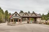 951 Castle Pines North Drive - Photo 18