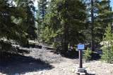 300 Snowshoe Rabbit Drive - Photo 1