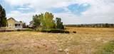 17786 Chicory Circle - Photo 5