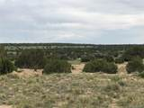 Lot 229 Turkey Ridge Ranch - Photo 16