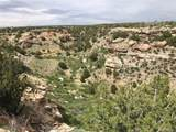 Lot 229 Turkey Ridge Ranch - Photo 8