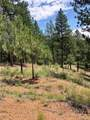 16348 Ouray Road - Photo 1