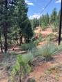 16348 Ouray Road - Photo 4