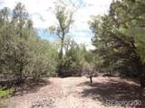 27 Pine Valley Loop - Photo 4