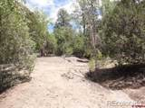 27 Pine Valley Loop - Photo 5