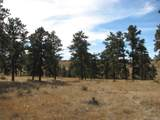 00008 Shadow Pines Road - Photo 3