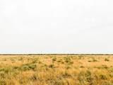 Parcel #2 Mimosa - Photo 5