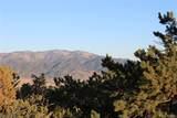 12250 Saddle Ridge Lane - Photo 14